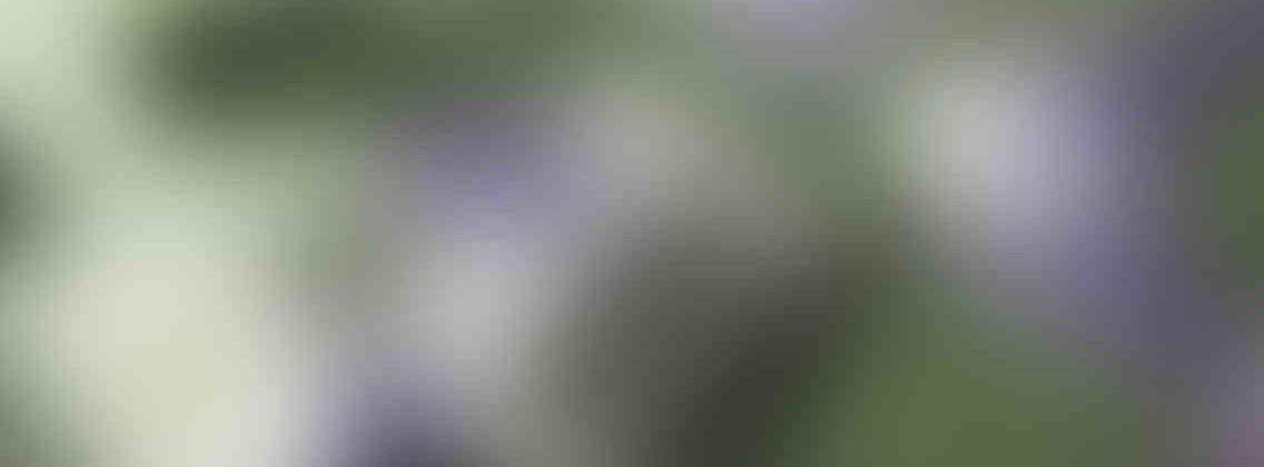 http://wellnessdaysouthcobb.com/wp-content/uploads/2013/03/relay_slide_3_v01-1136x420.jpg