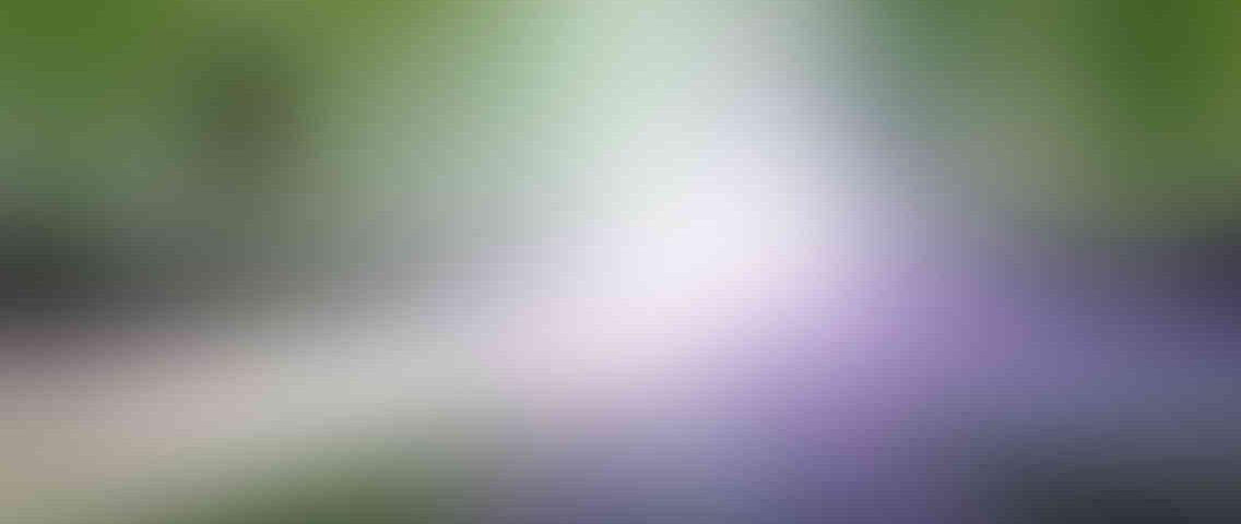 http://wellnessdaysouthcobb.com/wp-content/uploads/2013/03/standout_slide_1_v01-1136x480.jpg