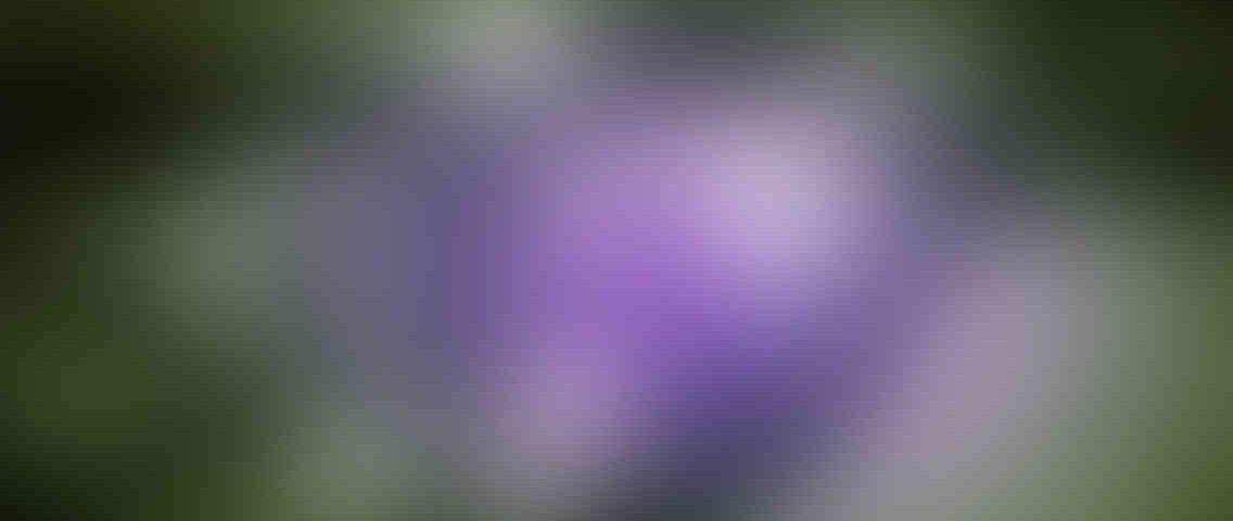 http://wellnessdaysouthcobb.com/wp-content/uploads/2013/03/standout_slide_3_v01-1136x480.jpg